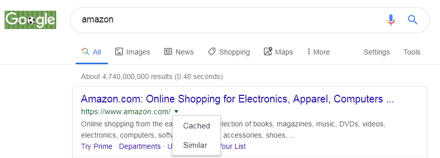 How to use Google Cache in the SERP